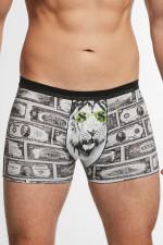 Cornette Tattoo Dollars 280/167 bokserki szary
